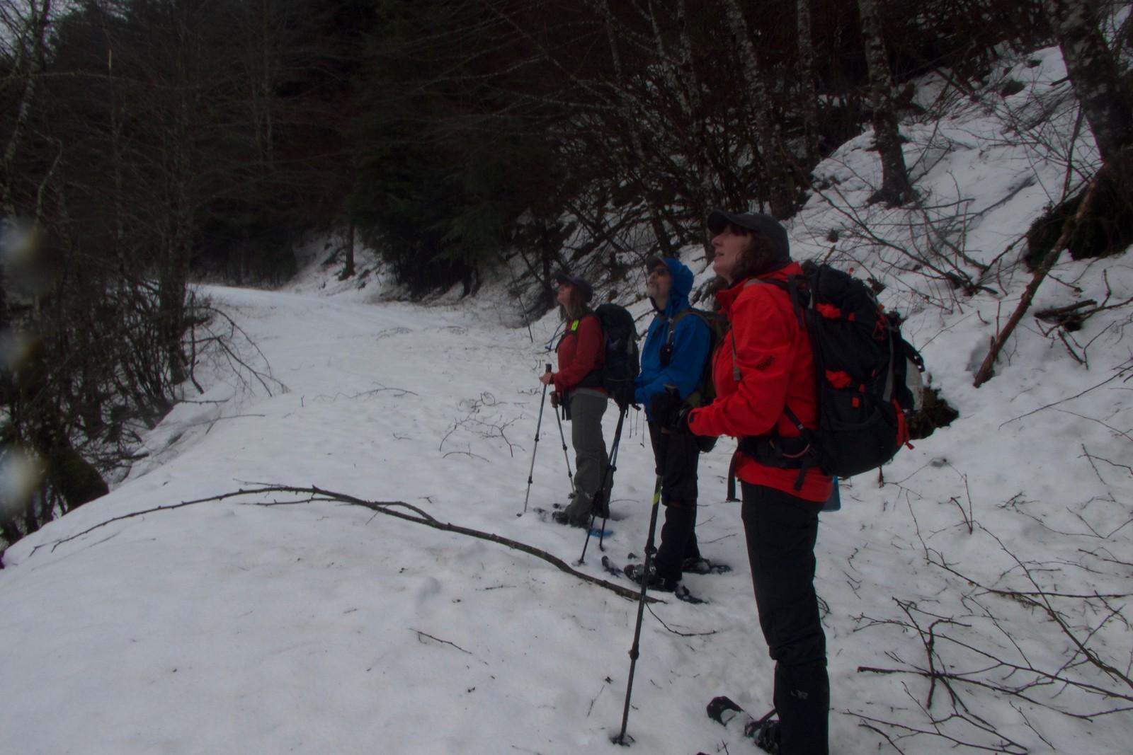 Barclay Lake Trailhead Snowshoe