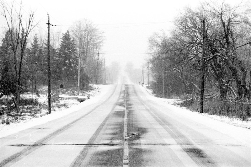 Mississauga Road Looking North During the Blizzard