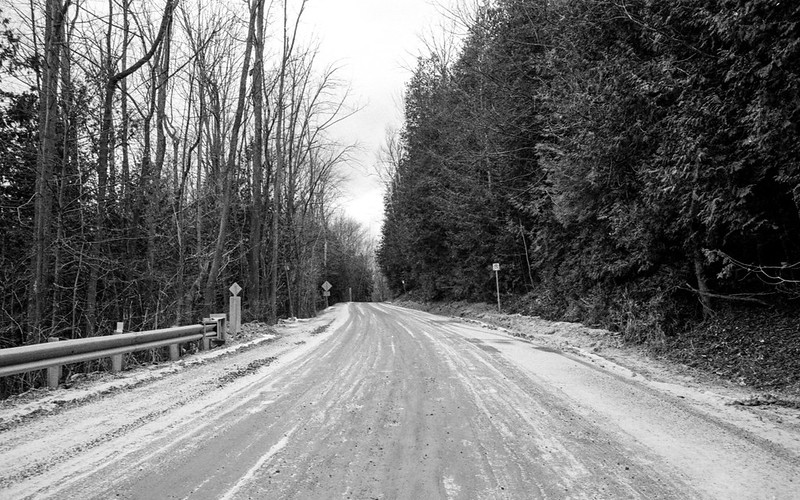 Maclaren Side Road through the Trees_