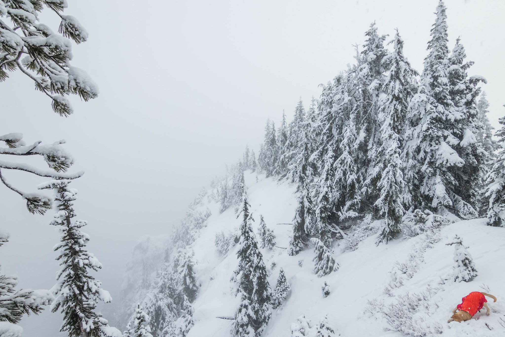 South view on Lux Peak