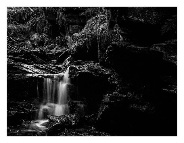 FILM - In a narrow gorge