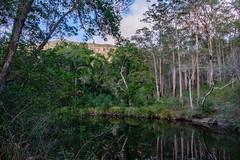 Gheerulla Creek Waterhole