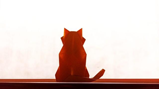 ネコ後ろ姿