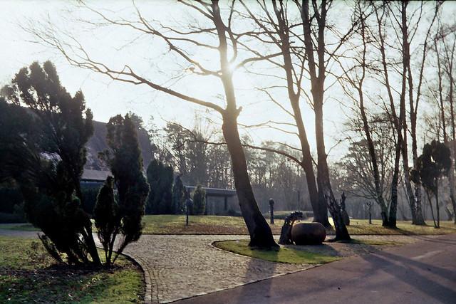 Waldfriedhof Lauheide - I shot film