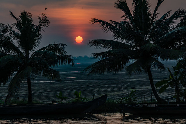 India - Kerala - Backwaters - Sunset - 4397