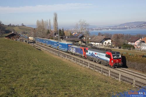 193 462 + Re 474 015 . SBB Cargo . Spiezmoos Nord . 21.01.20 .