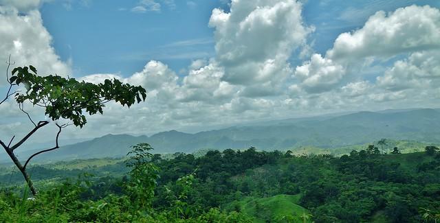 Mexico, Durch den Bergwald entlang der Grenze von Guatemala, Richtung Las Nubes,  19494/12334
