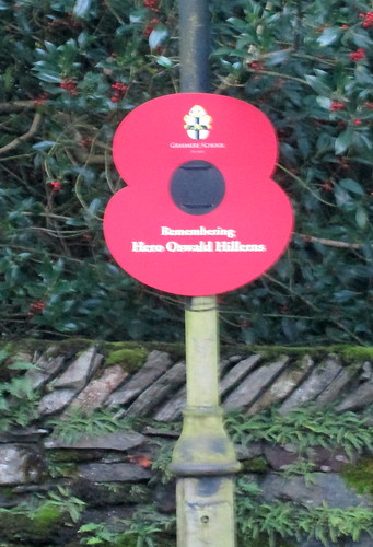 Poppy on Streetlight, Grasmere