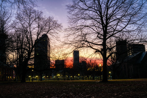 connecticut hdr newhaven newhavengreen nikon nikond5300 outdoor buildings city dawn downtown geotagged lights longexposure morning park silhouette silhouettes sky skyscrapers sunrise tree trees urban