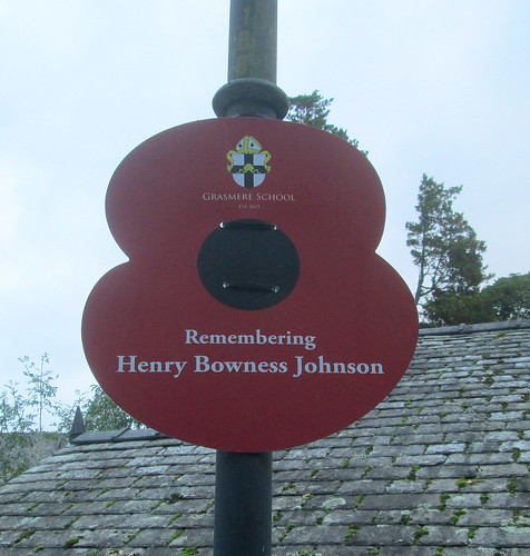 Streetlight Poppy, Grasmere