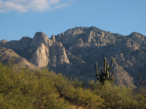 wild arizona mountains catalina desert tucson sonorandesert santacatalinamountains seaz pimacounty southwest nature zoniedude1 earthnaturelife canonpowershotg12 psp2020 landscape view