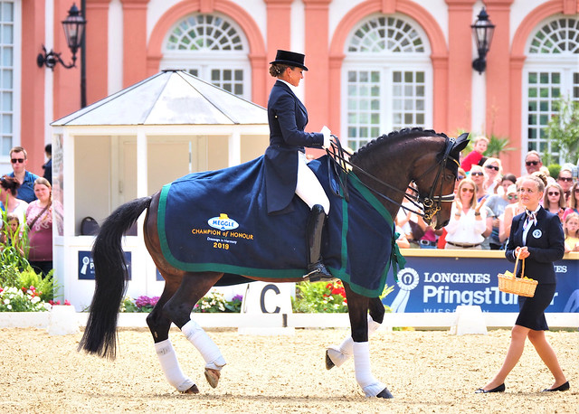 World's best Riders took part - Famous Horse Show in Wiesbaden-Biebrich, Germany 2019