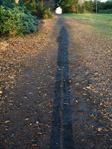 Long Shadow Walk