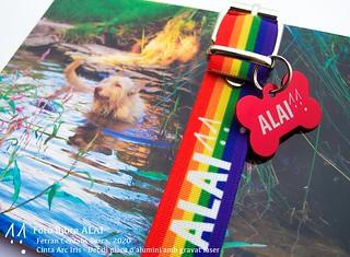 Foto llibre de postals ALAI