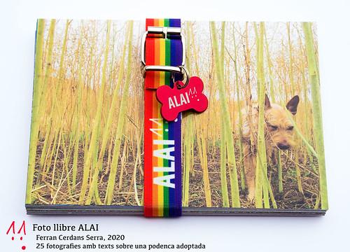 Foto llibre ALAI Arc iris amb placa gravada làser.
