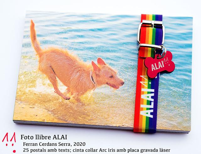 Foto llibre ALAI; Recompensa anual revista Un Mar Degota