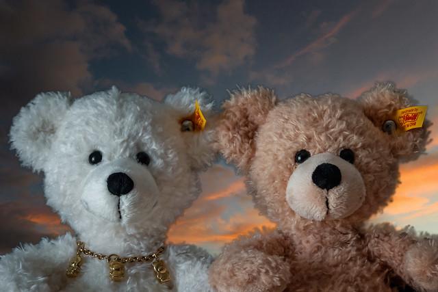 Bears, Olga und Fynn