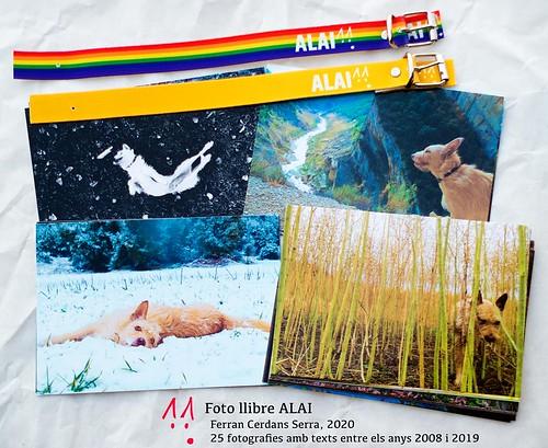 Algunes postals del Foto llibre ALAI