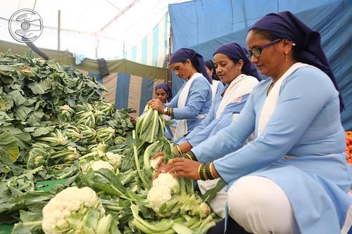Vegetables for Langer