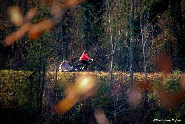 La fille en rouge au vélo vert.