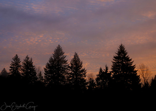 sunrise morningwalk morninglight morningsky