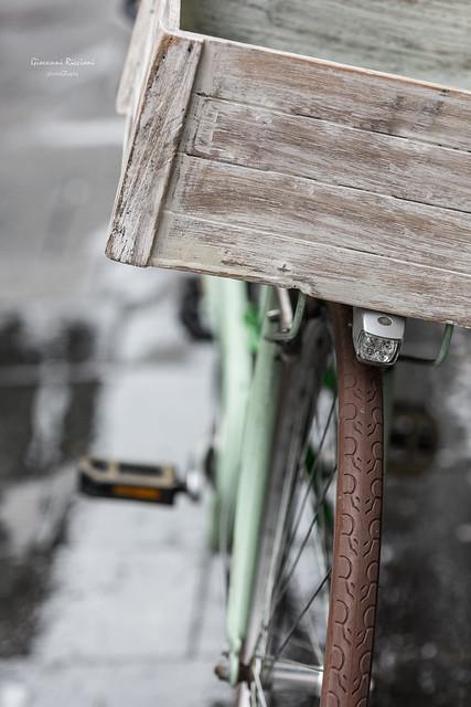 I want to ride my bicycle|Novara|Italy