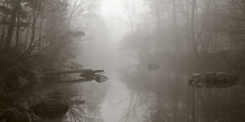 Fog, Eno River