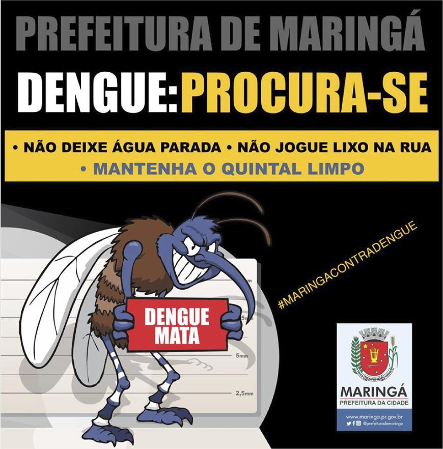 dengue02