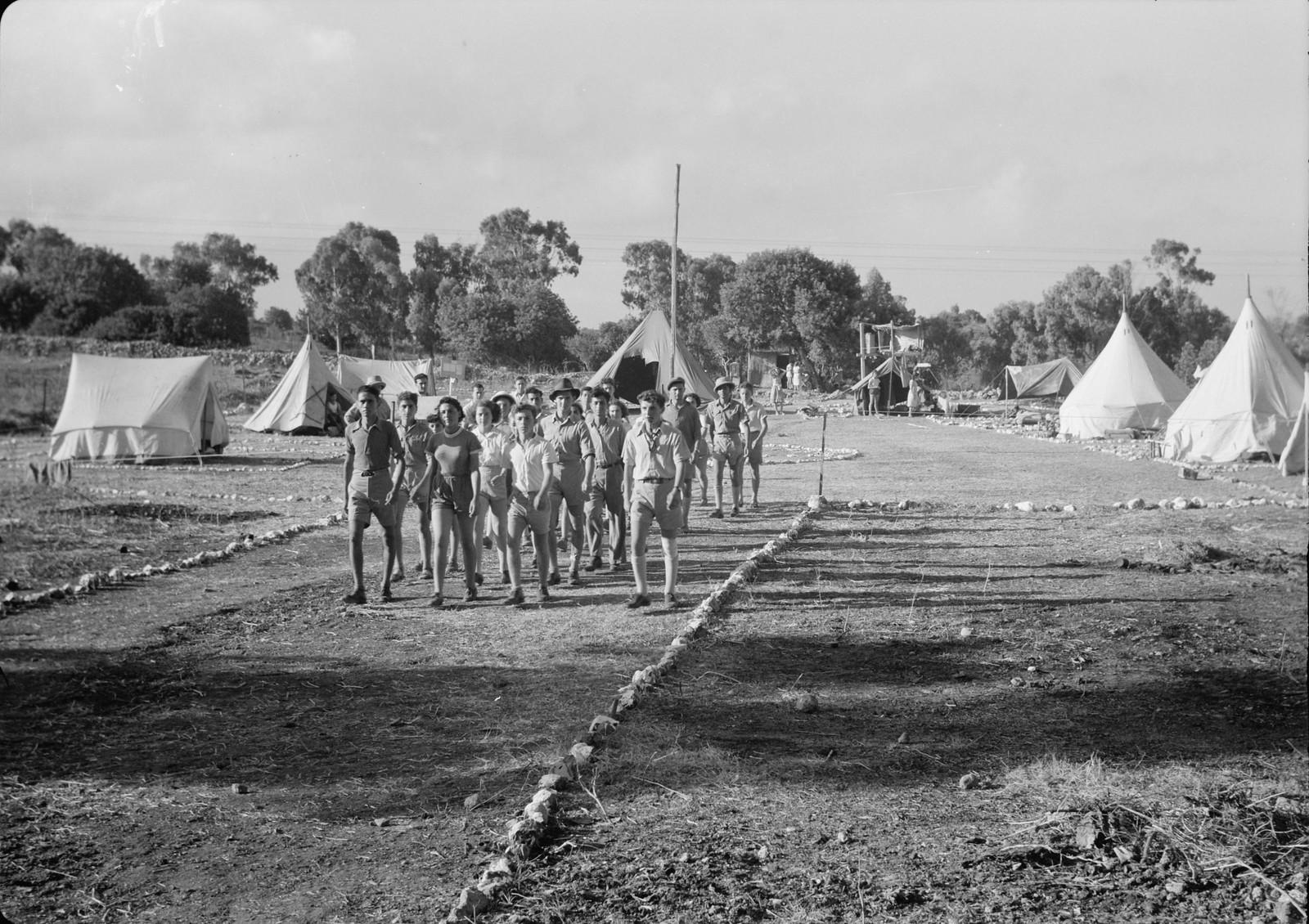 07. Рабочие выходят из лагеря, направляясь к виноградникам
