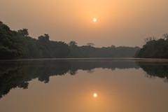 Sierra Leone - Outamba NP, Little Scarcies river