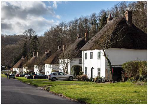 dorset uk miltonabbas thatchedroofs houses villiage cars trees grass england