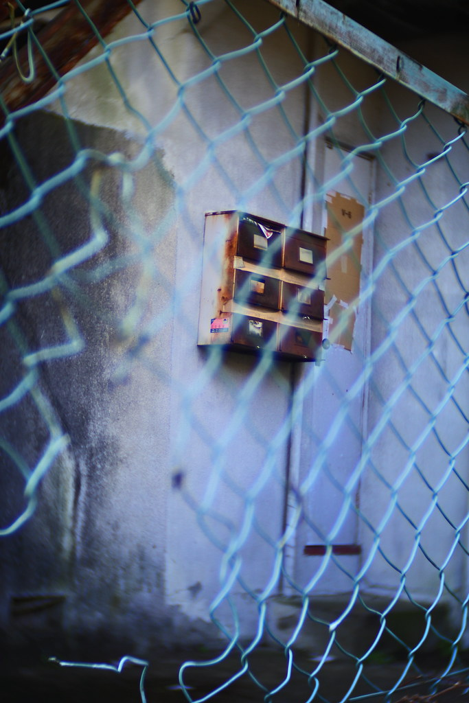 Nikon 1 j5 neewer 25mm f1.4
