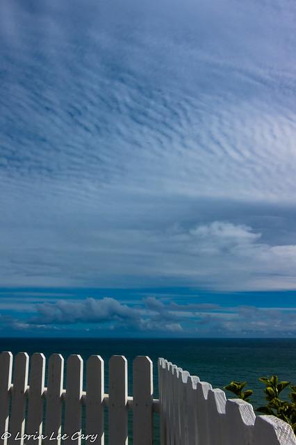 Fence Horizon
