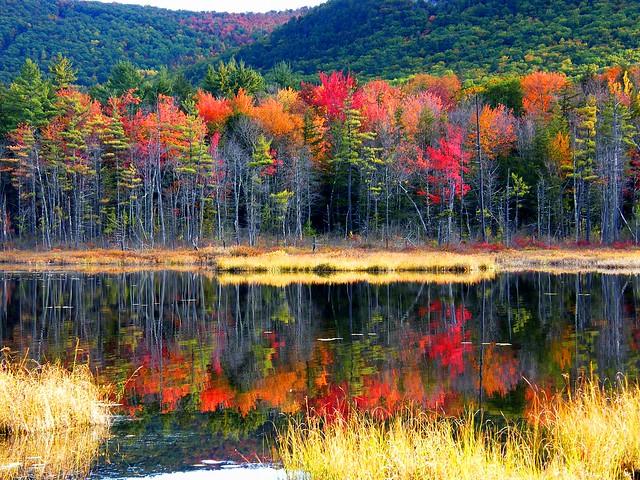 Pudding Pond N.H.