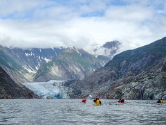 Wondrous Tracy Arm