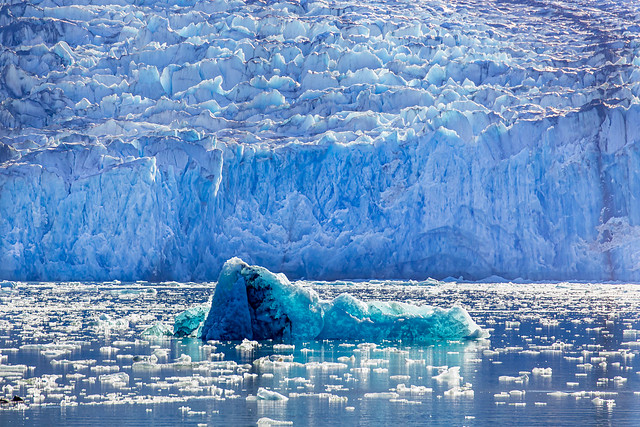 Glacial ice - Tracy Arm Fjord - Alaska