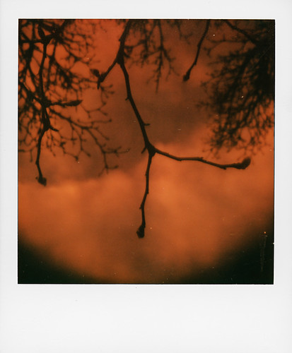Test ... orange lens with SX70