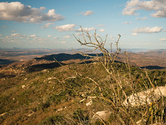 Pico do Jabre, Maturéia Paragliding