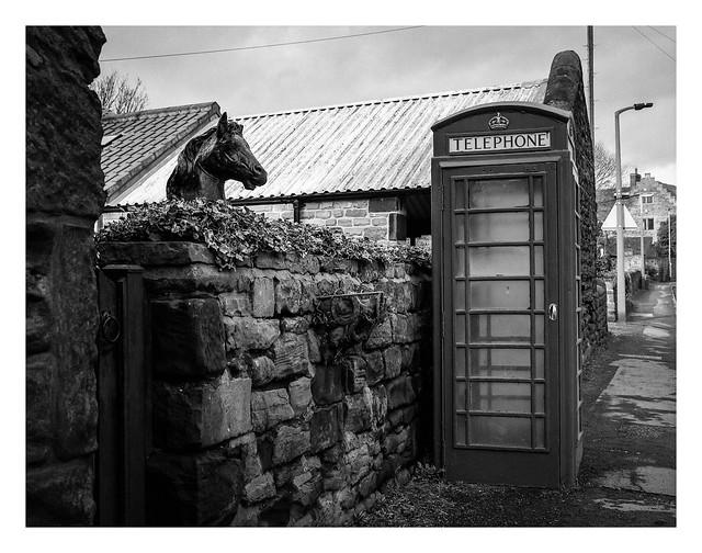 FILM - Equine phonebox spy
