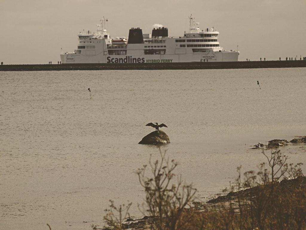 The ferry Deutschland from Scandlines in Puttgarden | 12. September 2017 | Fehmarn - Schleswig-Holstein - Deutschland