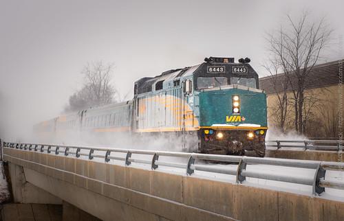 Snowy day in Ottawa