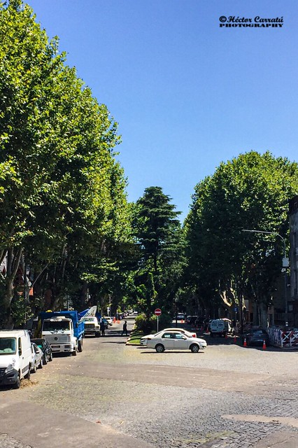 Calle en Villa Devoto