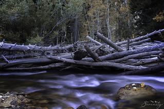 River Diverge
