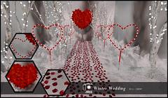 Joplino Backdrop Winter Wedding