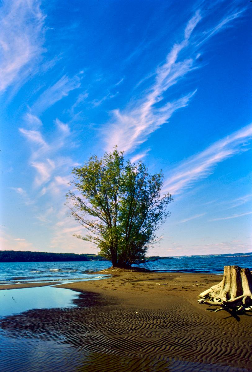 1997 Russia Sylva River