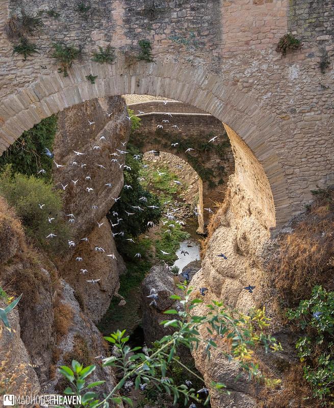 Spain - 2495
