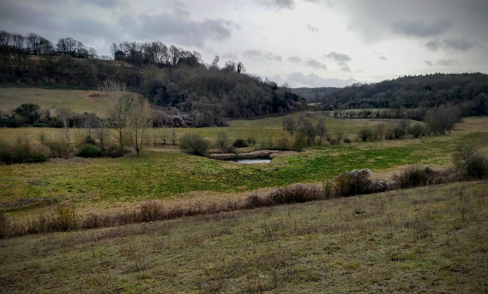 Darent valley - ex golf course near Shoreham