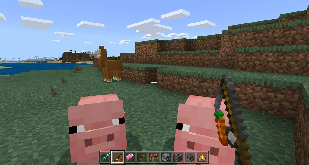 49482158813 66c7274a74 b - Minecraft Starter-Guide: Ackerbau und Viehzucht