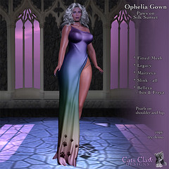 _CCD_ ad Ophelia Gown - Paws on Silk Sunset