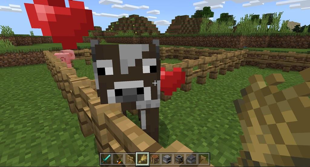 49482643241 1950373a35 b - Minecraft Starter-Guide: Ackerbau und Viehzucht